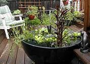 flower pot pond