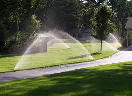 Tulsa Rotary sprinkler head