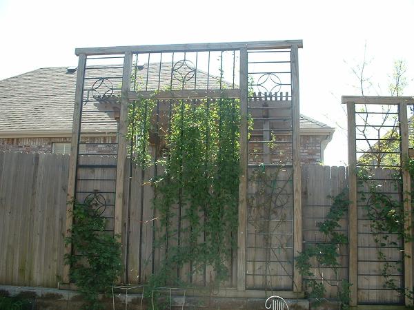 Backyard Landscape hardscape ideas in Tulsa